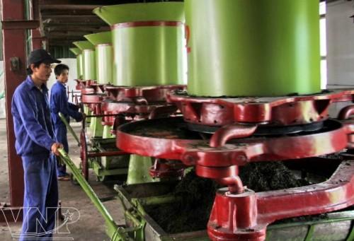 Lắp đặt hệ thống máy bơm chữa cháy cho nhà máy chè Sông Lô – Tuyên Quang
