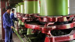 Lắp đặt hệ thống máy bơm chữa cháy cho nhà máy chè Sông Lô – Tuyên Quang thumbnail